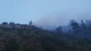 A fuoco un bosco a Cupi di Visso